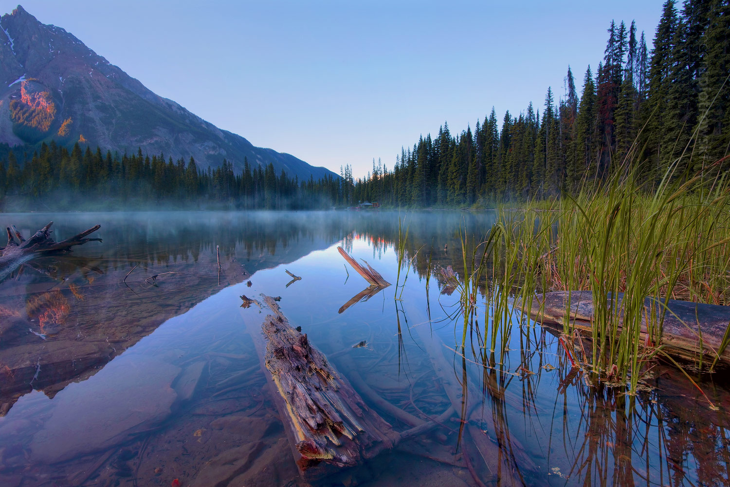 A sunrise landscape photograph taken on Emerald Lake in Yoho National Park during a calm morning with reflective water and mist combined with floating debris like logs and drift wood.