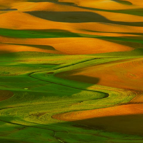 An abstract photograph taken with a telephoto lens showing the shapes, shadows, and colours of the hills in the Palouse area of Washington