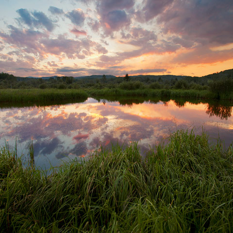 A pond reflecting a gorgeous sunset emphasizing the beauty of the Western Foothills around Bragg Creek.