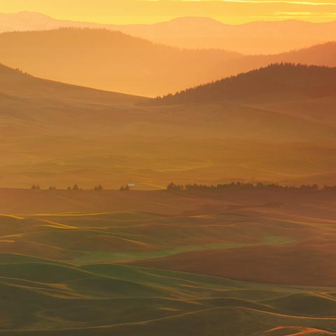 A wide angle photograph of the Palouse area in Washington State taken from Steptoe Butte at sunrise